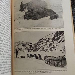 Vintage Accents - The Wilderness of Denali-Sheldon Book